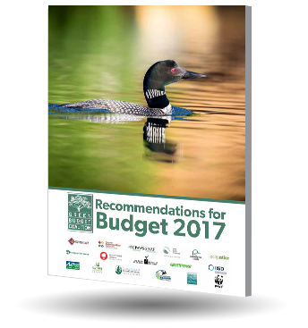 Green Budget Coalition cover 2017