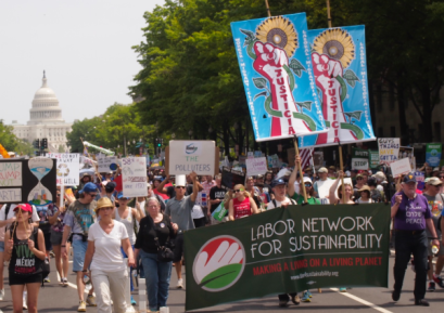 LNS at 2017 Washington Climate March