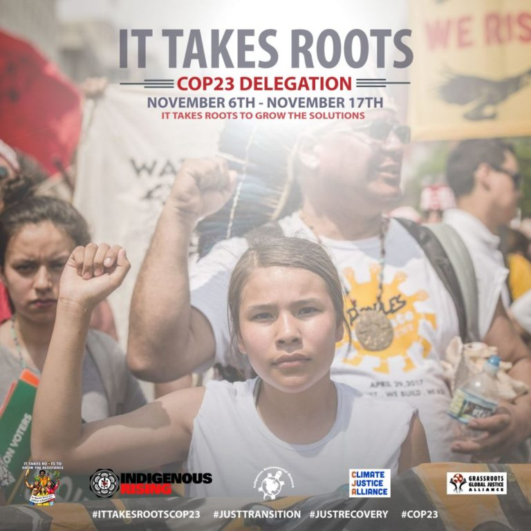 COP23-It takes roots Indigenous Network