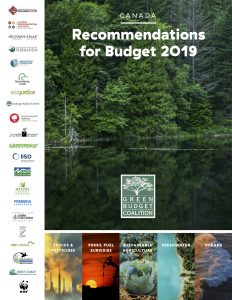 Green Budget cover 2019