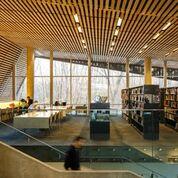 green bibliotechque