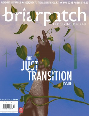 briarpatch special issue