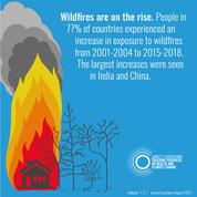 lancet wildfires