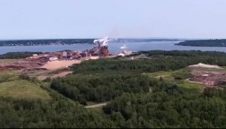 northern pulp view
